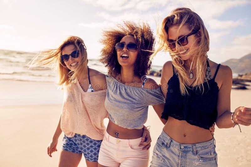 Grupp av härliga unga kvinnor som strosar på en strand royaltyfria bilder