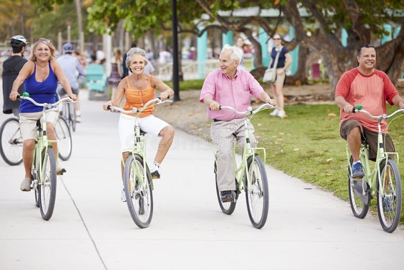 Grupp av höga vänner som har gyckel på cykelritt arkivbild