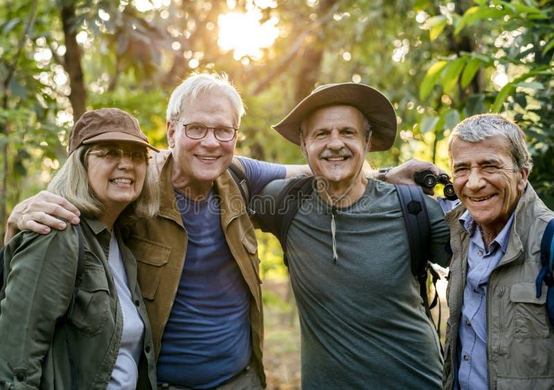 Grupp av höga vuxna människor som trekking i skogen arkivfoton