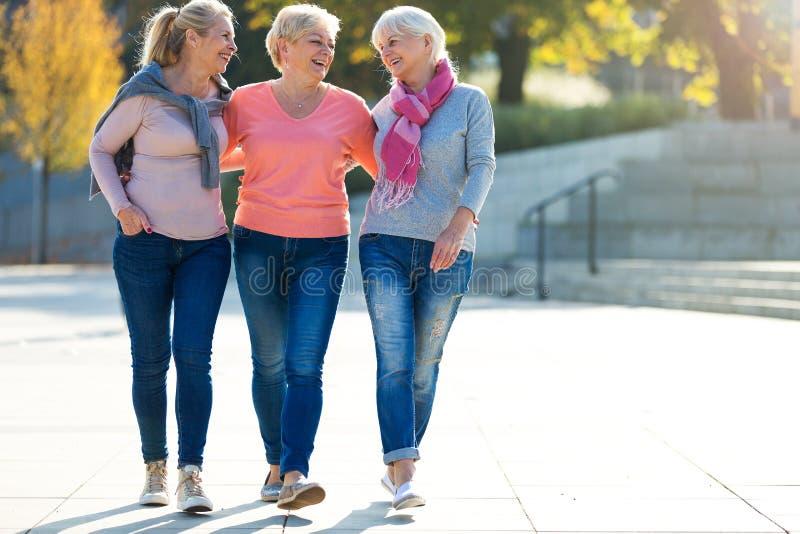 Grupp av högt le för kvinnor royaltyfri bild