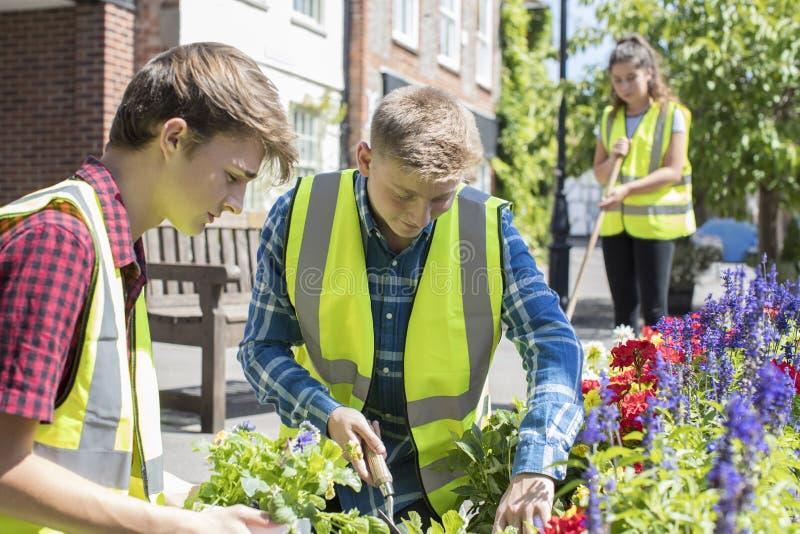 Grupp av hjälpsamma tonåringar som planterar och Tidying den kollektiva blomman royaltyfria foton