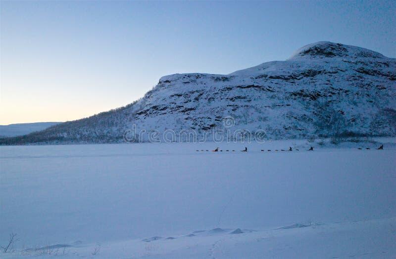 Grupp av huskiesryttare en arg fryst sjö i Lapland arkivbilder