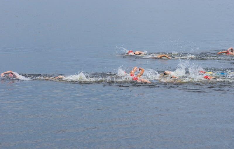 Grupp av idrottsman nen som konkurrerar på loppet för simning för kvinna` s under den Dnipro ETU triathlonen Junior European Cup royaltyfri foto