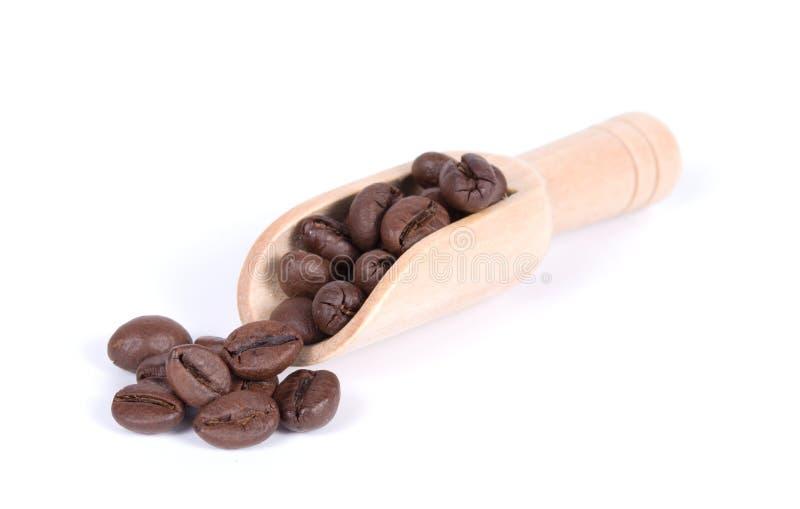 Grupp av kaffebönor i en träskopa som isoleras på vit bakgrund arkivbild