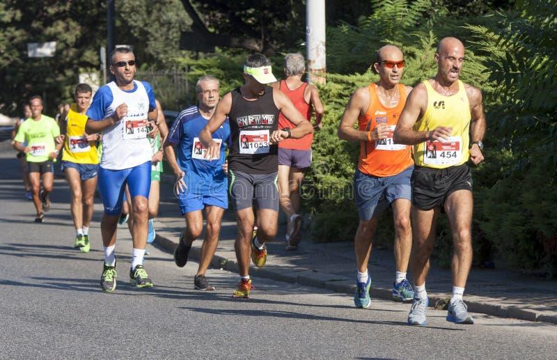 Grupp av löpare på vägen royaltyfria foton