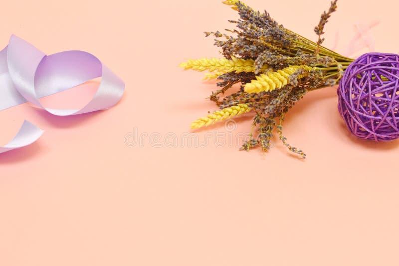 Grupp av lavendel på rosa bakgrund royaltyfri fotografi