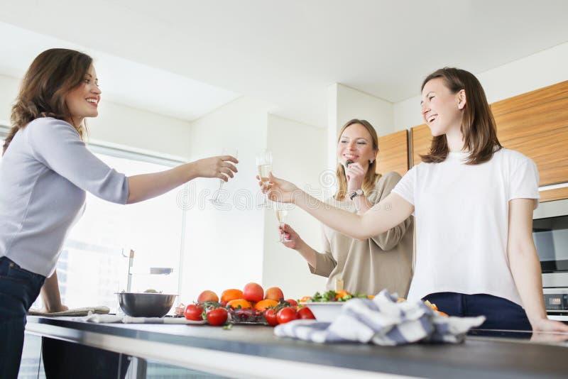 Grupp av lyckliga kvinnor som rostar på partiet i köket royaltyfria bilder