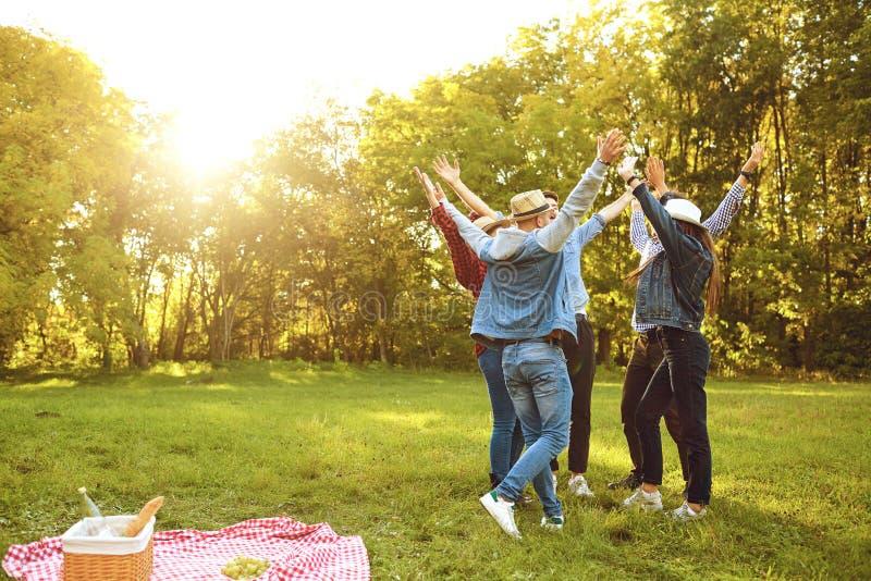 Grupp av lyckliga vänner på grön äng fotografering för bildbyråer