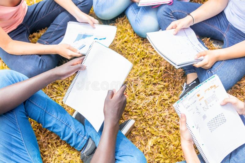 Grupp av mång- etniska tonåringar som gör kursen på gräset, deta royaltyfria foton