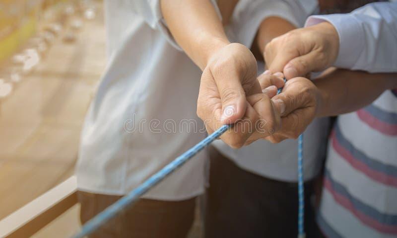 Grupp av manhänder som drar ett rep Begreppsbild av affärsteamwork med copyspace royaltyfri bild