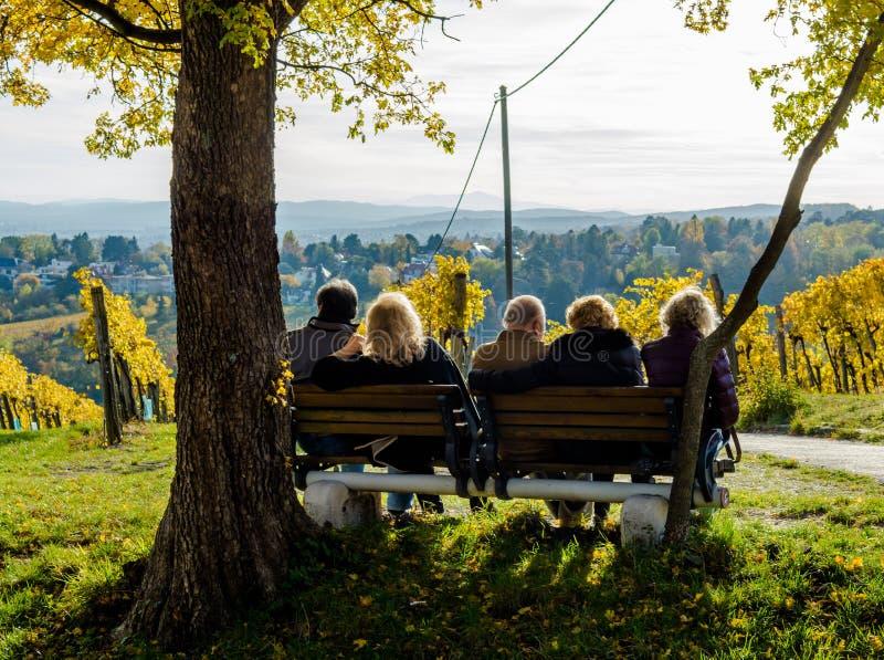 Grupp av manliga och kvinnliga pensionärer som sitter på bänk med sikt i höst royaltyfria foton