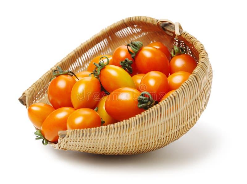 Grupp av mogna orange körsbärsröda tomater; fotografering för bildbyråer