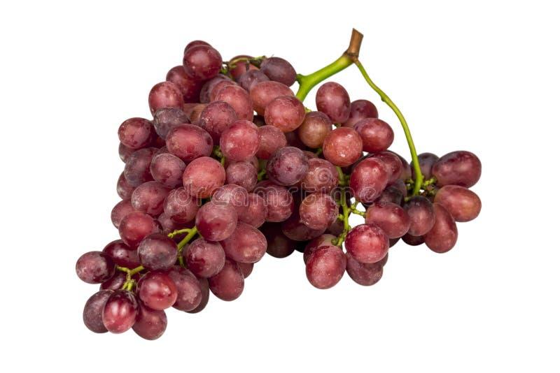 Grupp av mogna röda druvor som isoleras på vit arkivfoton