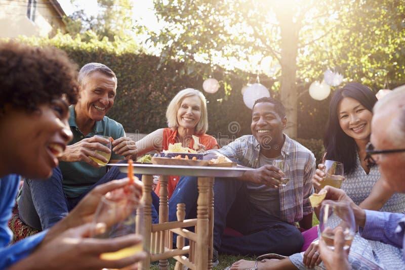 Grupp av mogna vänner som tillsammans tycker om drinkar i trädgård arkivbild