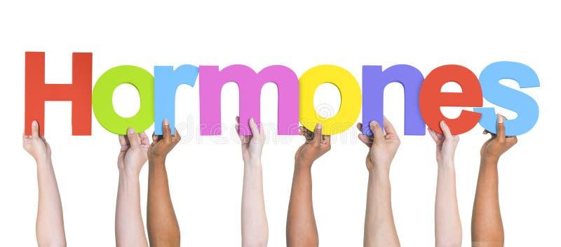 Grupp av multietniska händer som rymmer hormoner arkivbild