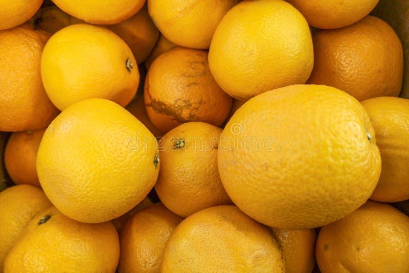 Grupp av nya apelsiner på marknad Sunda frukter, orange fruktbakgrund många orange frukter - orange fruktbakgrund i a royaltyfri bild