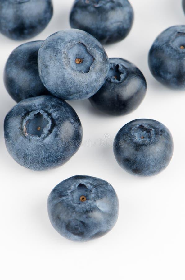 Grupp av nya blåbär royaltyfri bild