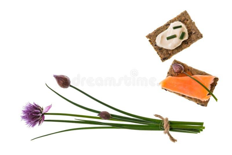 Grupp av nya gräslökar med wholemealsmällare med laxen och gräddfil royaltyfri foto