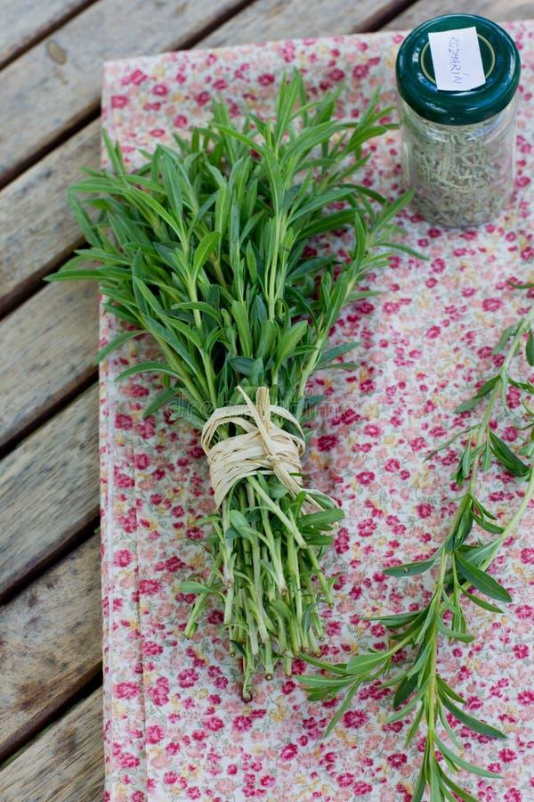 Download Grupp av nya rosmarin arkivfoto. Bild av sunt, leaf, natur - 37347650