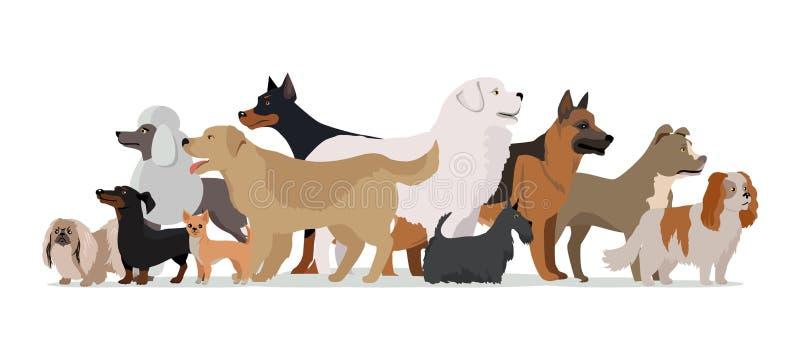 Grupp av olik avelhundkapplöpning stock illustrationer