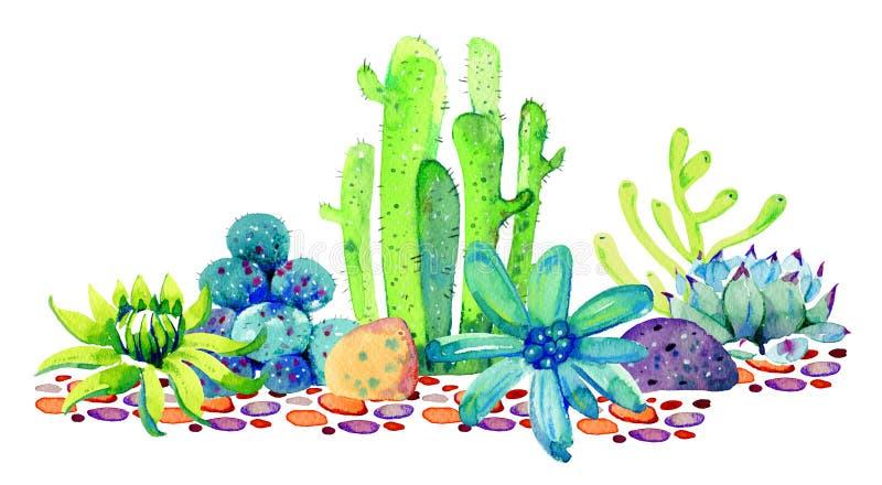 Grupp av olika kakturs och suckulenter på stenar Skissar utdragen färg för vattenfärghanden illustrationen royaltyfria foton
