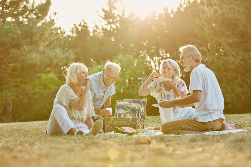 Grupp av pensionärer i parkera royaltyfria bilder