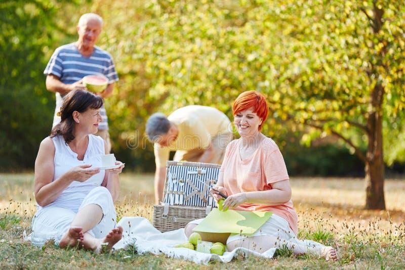 Grupp av pensionärer som gör en picknick med frukter arkivbild