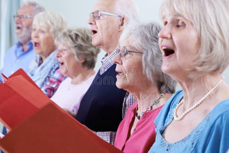 Grupp av pensionärer som tillsammans sjunger i kör royaltyfri fotografi