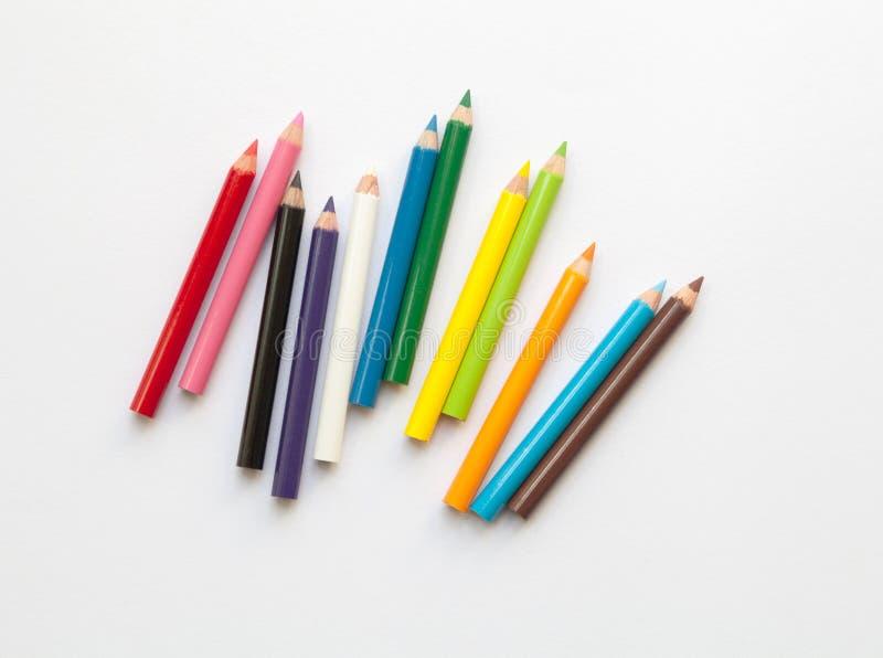 Grupp av rolig kortkort färgade blyertspennor som isoleras på vit Flerfärgad grupp av träblyertspennor fotografering för bildbyråer