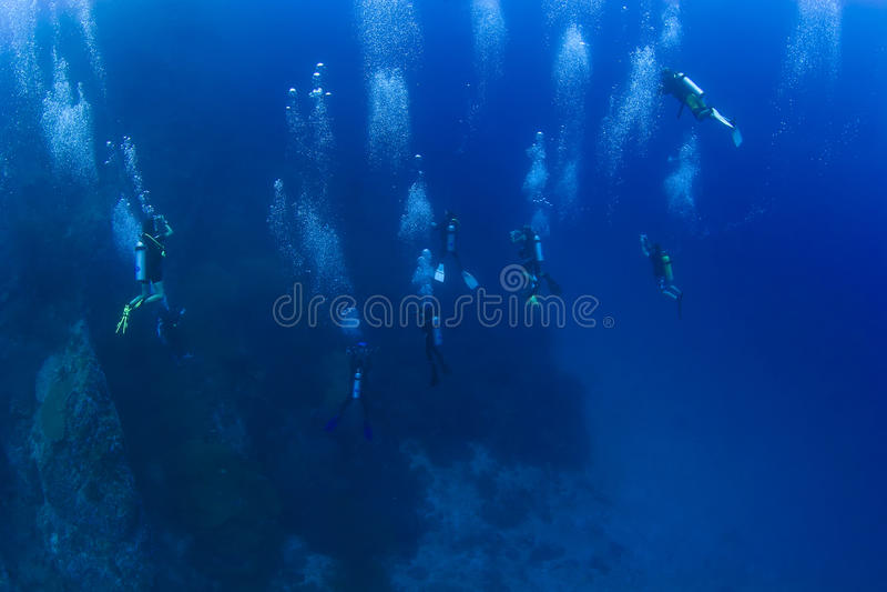 Grupp av scubadykare som stiger ned royaltyfria foton
