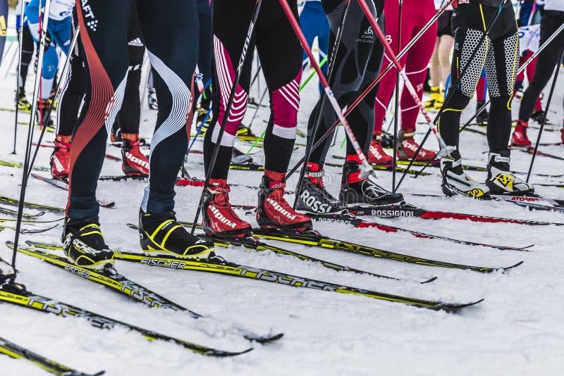Grupp av skidåkareidrottsman nen på startande linje fotografering för bildbyråer