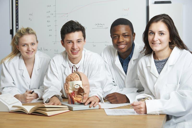 Grupp av studenter i biologigrupp arkivfoto