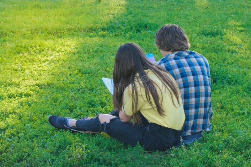 Grupp av studenter som tillsammans studerar på den gröna gräsmattan royaltyfria bilder