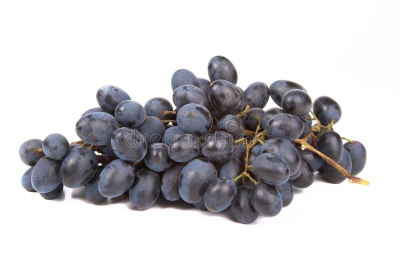 Grupp av svarta druvor som isoleras på vit bakgrund arkivfoto