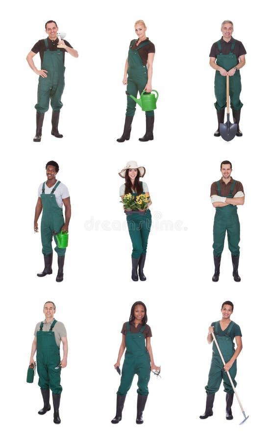 Grupp av trädgårdsmästarearbetare arkivbild
