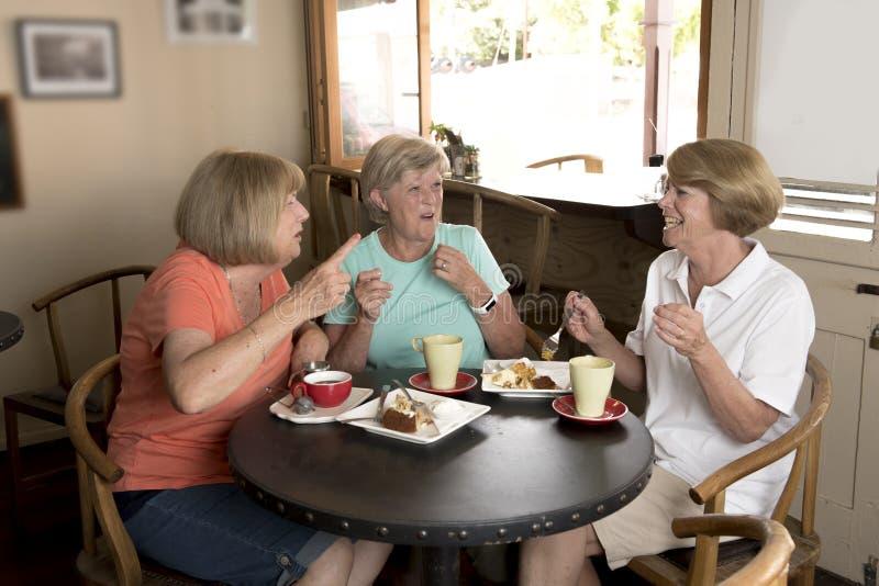 Grupp av tre flickvänner för kvinnor för älskvärd mellersta ålderpensionär som mogna möter för kaffe och te med kakor på coffee s arkivfoto