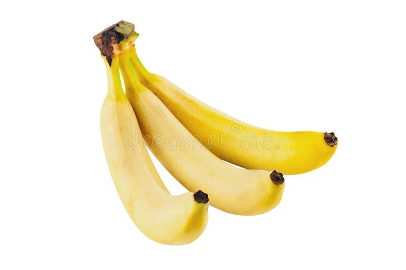 Grupp av tre nya hela bananer som isoleras på vit bakgrund royaltyfri fotografi