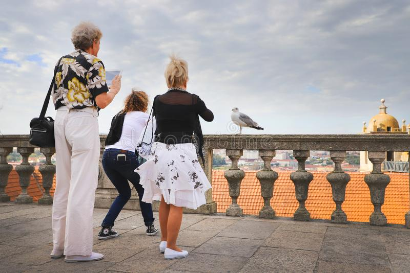 Grupp av turister som tar bilder av albatrossen i Porto, Portuga arkivfoto