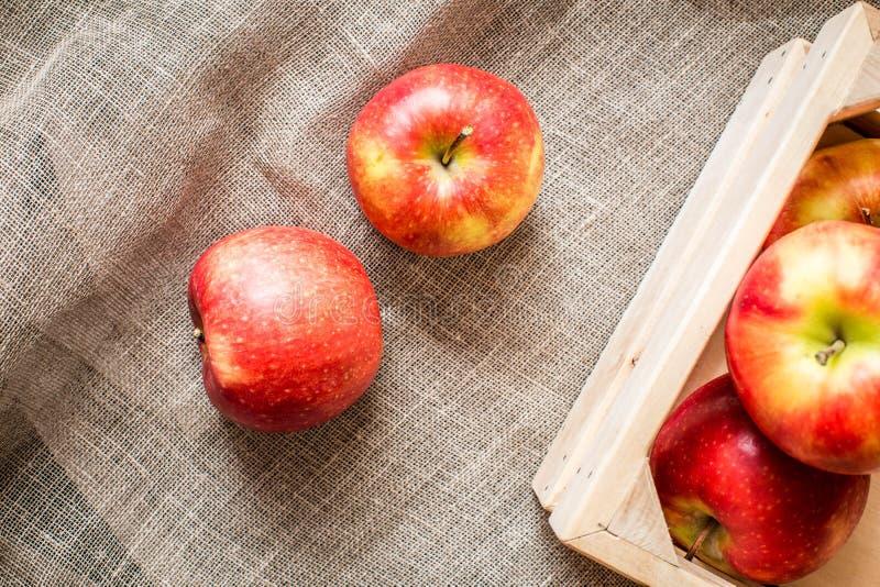 Grupp av två äpplen på lantlig bakgrund royaltyfria foton