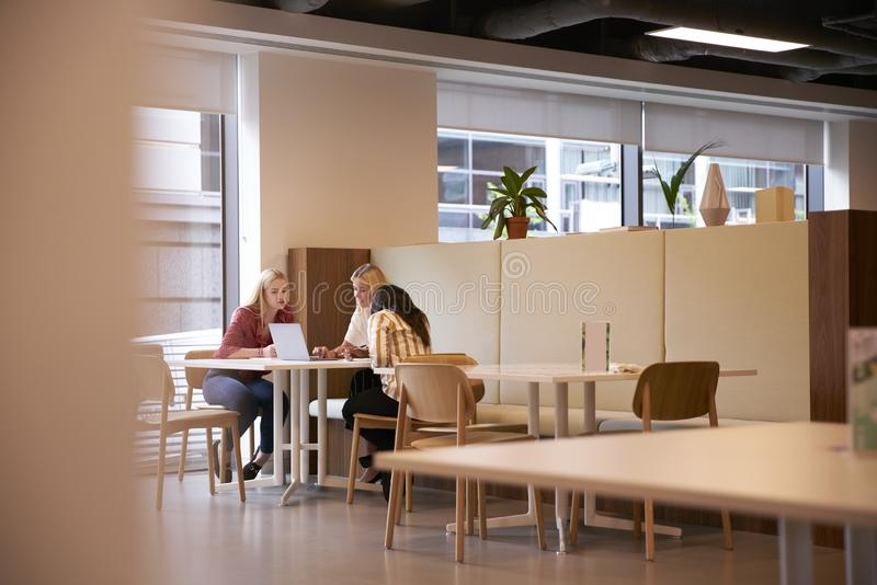Grupp av unga affärskvinnor som sitter runt om tabellen och samarbetar på uppgift genom att använda bärbara datorn arkivbild