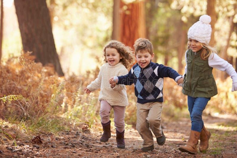 Grupp av unga barn som kör längs banan i Autumn Forest royaltyfri foto