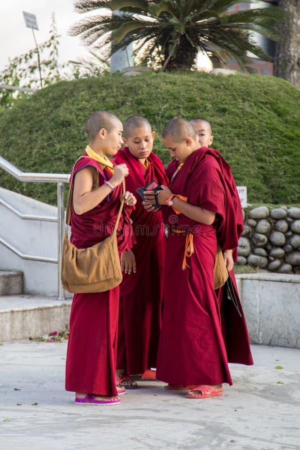 Grupp av unga buddistiska munkar i Katmandu royaltyfri bild