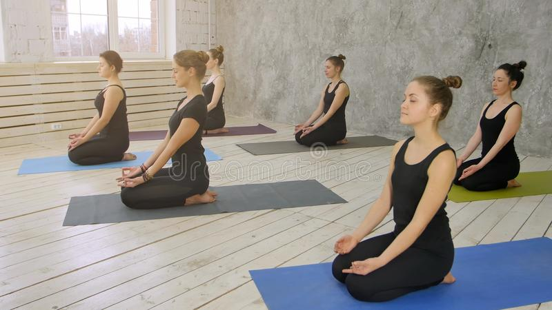 Grupp av unga kvinnor som öva yoga som sitter på matt yoga fotografering för bildbyråer