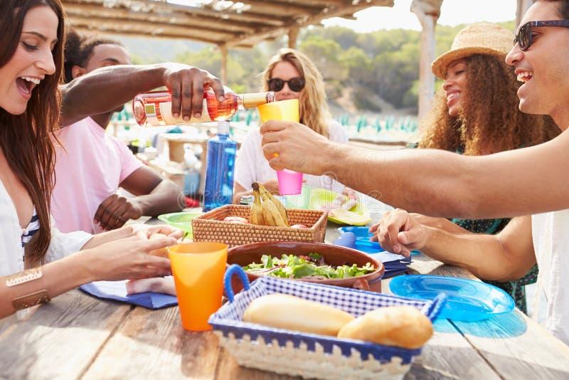 Grupp av unga vänner som utomhus tycker om lunch royaltyfri fotografi