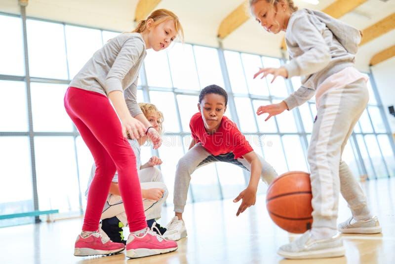 Grupp av ungar på en basketmatch royaltyfria foton