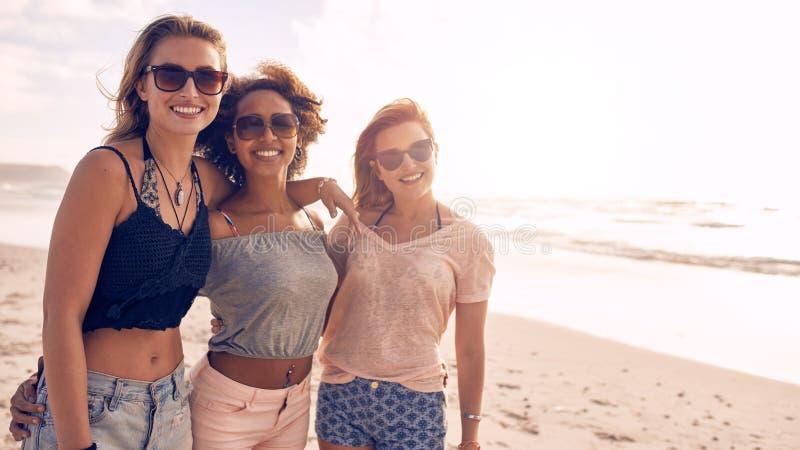 Grupp av vänner på strandsemester royaltyfri foto