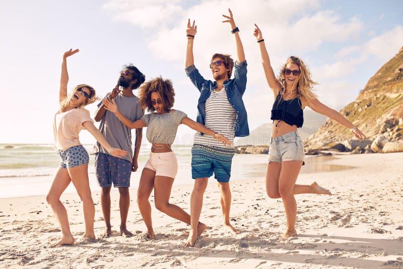 Grupp av vänner som har gyckel på stranden fotografering för bildbyråer