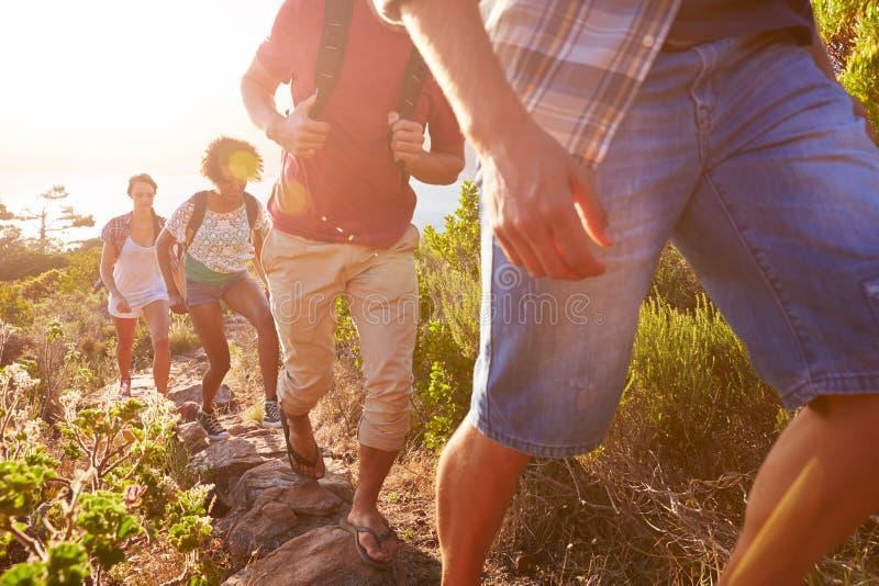 Grupp av vänner som tillsammans promenerar den kust- banan royaltyfri fotografi
