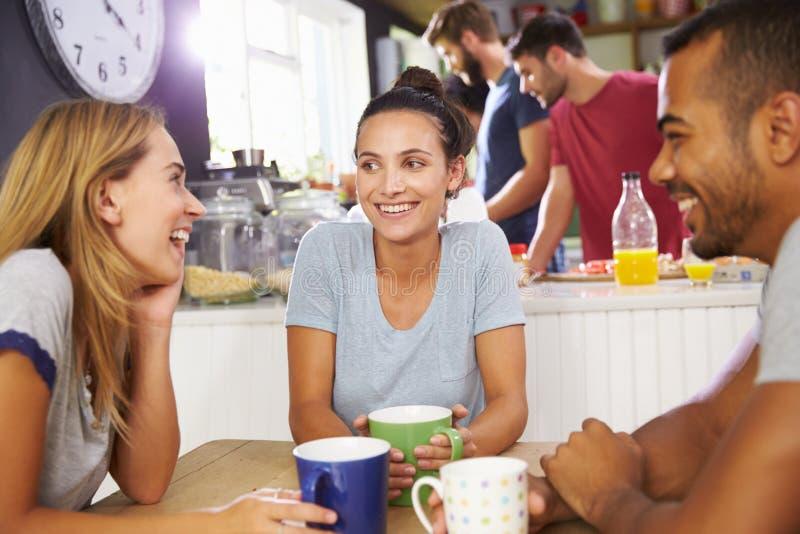 Grupp av vänner som tillsammans tycker om frukosten i kök arkivbild