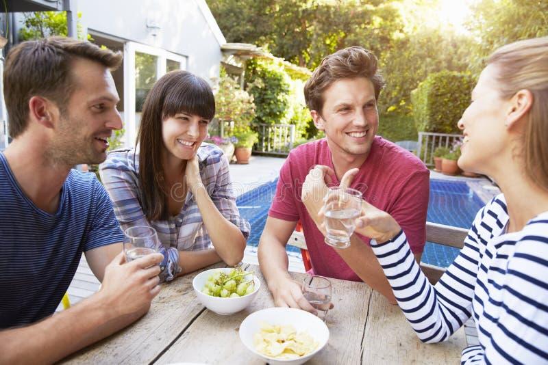 Grupp av vänner som tycker om utomhus- drinkar i trädgård arkivbild
